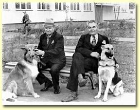http://zveri.net/dog/img/povodyry3.jpg